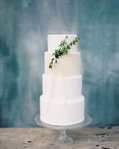 @greenlilybakery created my favorite cake of all time for Foundations, and with that sweet little sprig of spirea from @bristollane? I'm in love!  styled to perfect toon by @westcottweddings. See the full feature on @weddingsparrow today! #mbpworkshops #foundationsworkshop #fineartfilm #contax645 #fujifilm