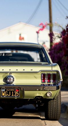 Heiße Autos Source by classiccarsvintage Related posts: No related posts. Ford Mustang Classic, Vintage Mustang, Ford Classic Cars, Mustang Fastback, Ford Mustang Shelby, Mustang Cars, 1967 Mustang, Muscle Cars Vintage, Vintage Cars