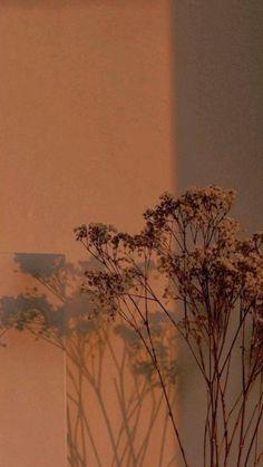 Plain Wallpaper Iphone, Orange Wallpaper, Phone Wallpaper Images, Aesthetic Desktop Wallpaper, Aesthetic Backgrounds, Wallpaper Backgrounds, Phone Wallpapers, Mystic Wallpaper, Light Brown Wallpaper