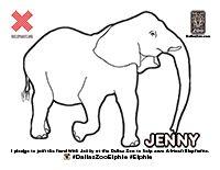 Jenny Elephant Color Page