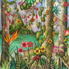 Tropical Paradise Video is up: https://www.youtube.com/watch?v=EAMPJ37DAbU Coloring Book: Magical Jungle by Johanna Basford  Colored Pencils: Prismacolor Premier