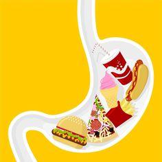 Ingesta de grasa. Recomendaciones - Es importante moderar el consumo de grasa total y, especialmente, de grasa saturada, procedente principalmente de alimentos de origen animal y aumentar el consumo de verduras, hortalizas, cereales, leguminosas, frutas (fuente de fibra y vitaminas antioxidantes) y de pescados grasos y aceites... - eduvirama.com
