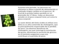 Ventajas Del Grano De Café Verde Para Perder Peso - http://dietasparabajardepesos.com/blog/ventajas-del-grano-de-cafe-verde-para-perder-peso/