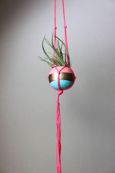 Neon Pink Macrame Air Plant Hanger with by ThriftedandMade on Etsy, $28.00