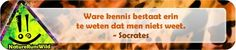 Ware kennis bestaat erin te weten dat men niets weet. - Socrates http://naturerunswild.com/spreuken-wijsheid.php #citaat