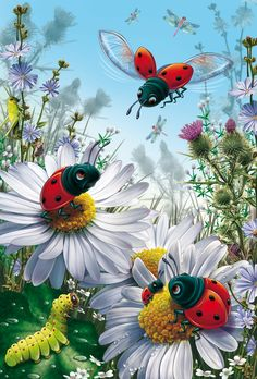 Daisy & Ladybug picture home decor Diy Diamond Painting Diamond Mosaic Beads Cross Stitch Full Square Round Diamond Embroidery Fantasy Kunst, Fantasy Art, Art Floral, Art Fantaisiste, Art Mignon, Ladybug Art, Cross Paintings, Wall Paintings, Flower Pictures