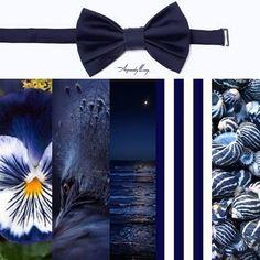 Pajarita Classic por ARQUIMEDES LLORENS Color: AZUL NAVY #pajarita #bowtie #bowties #pajaritas #corbatin #gala #etiqueta #smoking #elegante #inspiración