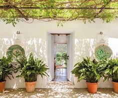 The perfect summer holiday home in picturesque Ronda