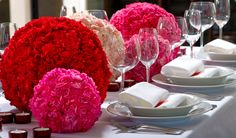 Carnations go GLAM!