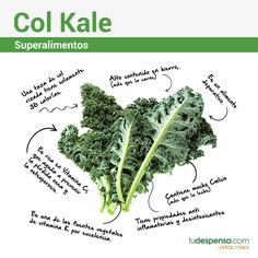 Ahora ya conoces las propiedades de la #ColKale, aprende a cocinarla en nuestra Web.