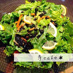 もりもり食べられる〜! - 65件のもぐもぐ - チョレギサラダ、風 by mayumi3