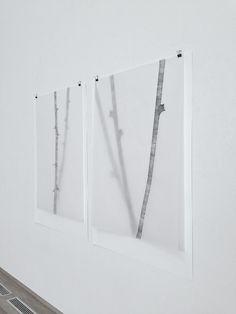 Zahid Movla; graphite drawing