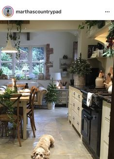 Make kitchen a bit smaller and turn chair into couch Country Kitchen, New Kitchen, Kitchen Decor, Kitchen Ideas, Cottage Kitchens, Home Kitchens, Cozinha Shabby Chic, Kitchen Design Open, Cottage Interiors