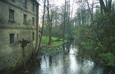 Mazowsze-Zaluski-mlyn