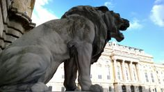 Guardians of the Royal Palace in Buda Castle, Budapest Hungary Buda Castle, Royal Palace, Budapest Hungary, Lion Sculpture, Elephant, Statue, Animals, Animales, Animaux