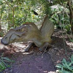 #DinoInvade http://ift.tt/2mU757V