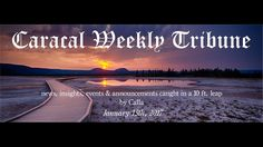 Caracal Weekly Tribune CWT: Scot Stoddard. Interview by Catherine Corelli