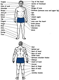 Knowledge of pressure points and pressure point techniques is a useful addition to ones self defense arsenal. When appropriately used, they provide an effective means of controlling an adversary without necessarily inflicting serious injury.   Listed below are a few pressure points on the human body.