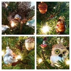 I love Christmas!! Some of my favorite little 'scenes' from my tree :) I especially enjoy the bottom right one with the little mouse sleeping/hiding in a nut behind the owl :) hehe I'm a dork! #ilovechristmas #christmas #christmasornaments #ornaments #christmasdecorations #socute #nature #naturalchristmas #cute #animals #instagood #follow