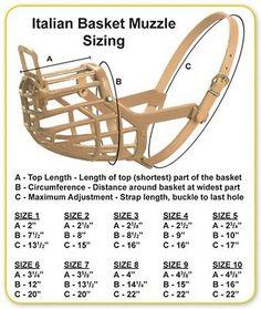 Italian Basket Muzzle for Dogs. These flexible polyethylene basket muzzles feature. Sizes indicated are for typical adults. Japanese Dog Breeds, Japanese Dogs, Rawhide Bones, Dog Body Language, Dog Muzzle, Dog Teeth, Dog Care Tips, Dog Eating, Teeth Cleaning