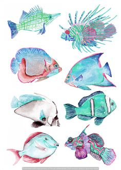 Turquoise Coral Reef Fish Watercolor Decals - Bathroom Tile Wall Vinyls - Set of 8 Under the Sea Bathroom Stickers - Hand-Drawn Fish Decals
