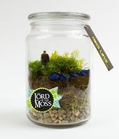 Frodo Baggins Moss Terrarium // Lord of the by MossLoveTerrariums, $25.00