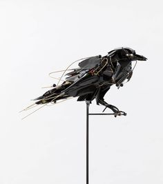 Raven 2017 copper, brass, ink, freshwater pearls, onyx 61 x 60 x 30cm