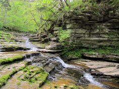 12 Incredible Hikes Under 5 Miles Everyone In Kentucky Should Take