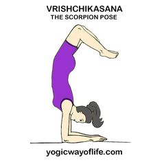 32 best asana or yogic poses images  asana poses yoga poses