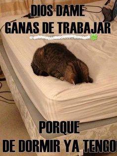#trabajar #dormir