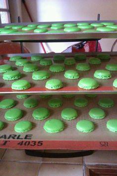 macarons in progress