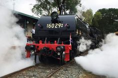The restored locomotive Beyer Garratt 6029, now known as the City of Canberra, lets off steam in its namesake city. (ABC: Adrienne Francis)