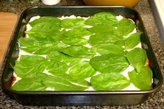 Egg Plant Lasagna (No Noodle)... Going to have to try this one. I've never even had egg plant!
