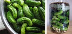 We'll be making tons and tons of these this year. Bubbies pickles are great so homemade will be even better!