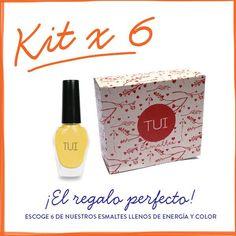 Kit x 6