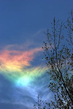 The Fire Rainbow An Astonishing and Rare Marvel of Nature