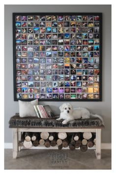 Can't wait to do this with photos of friends and family when I move. :)