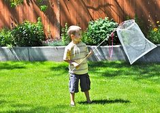 Homemade Butterfly Net from Little Birdie Secrets | Skip To My Lou