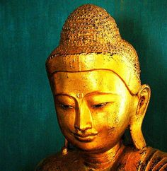 serenity of the buddha Buddha Buddhism, Buddha Art, Buddha Statues, Golden Buddha, Buddhist Philosophy, Teal And Gold, Religious Art, Serenity, Religion
