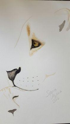 Watercolor art lion