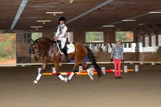 Dressage Fitness and Balance with Cavalletti  By Beth Baumert Germany's Ingrid Klimke and Dr. Ina Goesmeier offer tips at the New England Dressage Association Symposium.