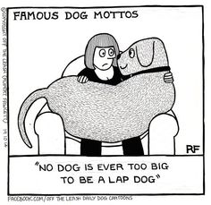 Another Famous Dog Motto - Off The Leash by Rupert Fawcett ~ dog humor dog funny dog funny funny aesthetic funny face funny hilarious funny quotes funny sleeping Dog Comics, Famous Dogs, Crazy Dog Lady, Cute Puppy Pictures, Cartoon Dog, Dog Cartoons, Lap Dogs, Dog Rules, Dog Leash