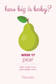 In week your baby is really starting to move. Get tips on making daycare decisions, dealing with dizziness, and more. 17 Weeks Pregnant Size, 17 Weeks Baby Size, Baby Weeks, 5 Month Old Baby, Pregnant Baby, Baby Development In Womb, Baby Development Milestones, Baby Development Chart, Pregnancy Development