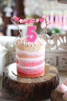 Reign Magazine | Fairy Garden Children's Birthday Party / Pink Ombre Naked Cake
