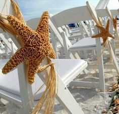 hanging seashells from the chairs