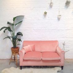 Love the walls and couch looks 90s