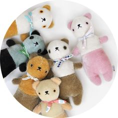Polka Dot Club — ::: PDC Bear ::: more colors