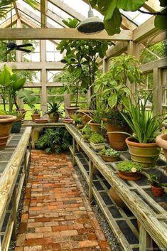 Diy Greenhouse Plans, Best Greenhouse, Backyard Greenhouse, Backyard Landscaping, Landscaping Design, Greenhouse Wedding, Greenhouse Film, Pallet Greenhouse, Underground Greenhouse