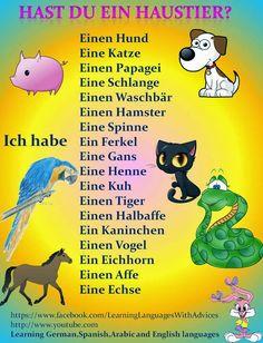German Grammar, German Words, German English, Learn English, Learn French, German Resources, Germany Language, Teaching French, Teaching Spanish