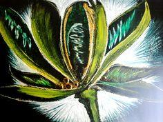 Tropical | Semilla | Flor